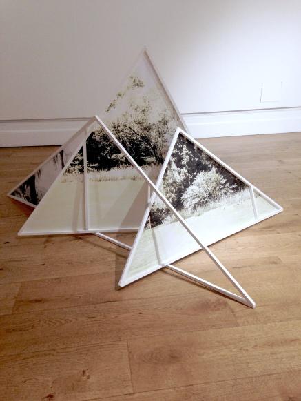 trianglespeltz13